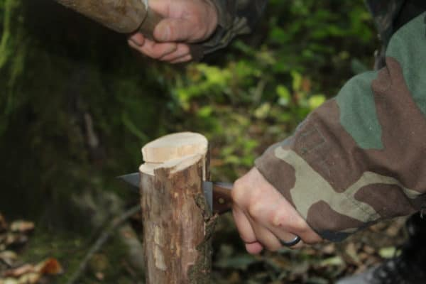 Introduction to Survival and Bushcraft